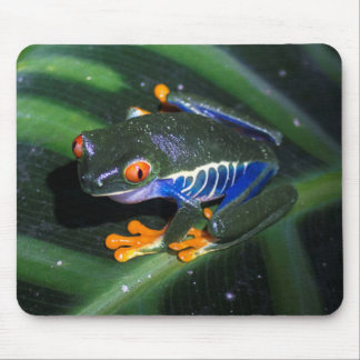 Red Eyes Frog On Leaf Mouse Pad