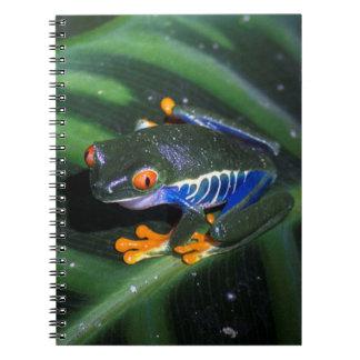 Red Eyes Frog On Leaf Notebook
