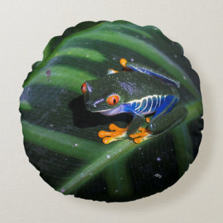 Red Eyes Frog On Leaf Round Pillow