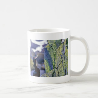 Red-faced Cormorant and Parakeet Auklet Mugs