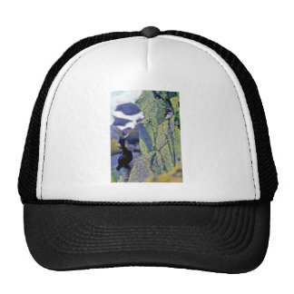 Red-faced Cormorant and Parakeet Auklet Trucker Hat