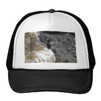 Red-faced Cormorant Trucker Hats