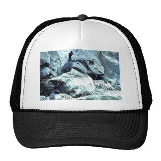 Red-faced Cormorant Trucker Hat