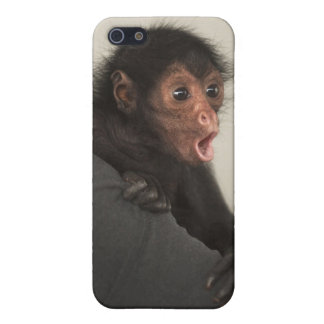 Red-faced Spider Monkey Ateles paniscus) Case For iPhone SE/5/5s