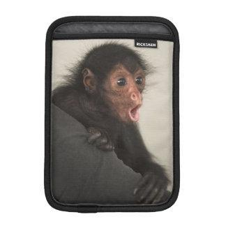 Red-faced Spider Monkey Ateles paniscus) iPad Mini Sleeve