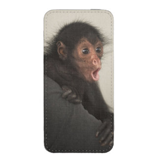 Red-faced Spider Monkey Ateles paniscus) iPhone SE/5/5s/5c Pouch