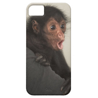 Red-faced Spider Monkey Ateles paniscus) iPhone SE/5/5s Case