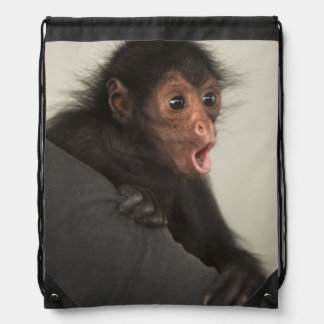 Red-faced Spider Monkey Ateles paniscus) Drawstring Bag