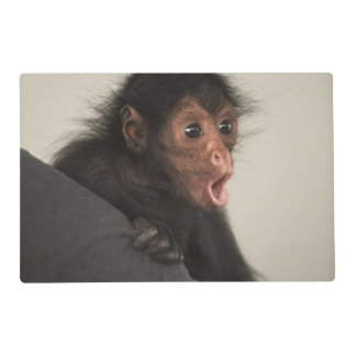Red-faced Spider Monkey Ateles paniscus) Placemat