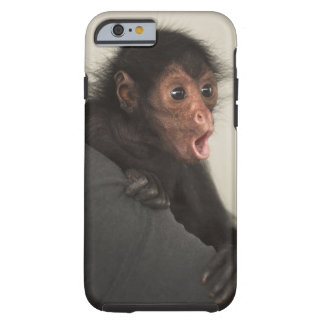 Red-faced Spider Monkey Ateles paniscus) Tough iPhone 6 Case