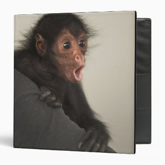 Red-faced Spider Monkey Ateles paniscus) Vinyl Binder