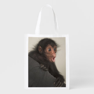 Red-faced Spider Monkey Ateles paniscus) Market Totes