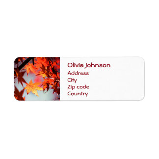 Red Fall Autumn Leaves Maple Tree Label