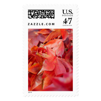 Red Fall Leaves Postage