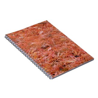 Red Fallen Autumn Leaves Notepad Notebook