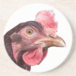 Red Feathered Chicken Egg Layer Hen Beverage Coasters