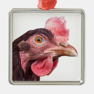 Red Feathered Chicken Egg Layer Hen Metal Ornament