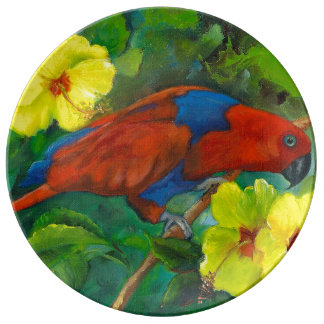 Red female eclectus parrot plate