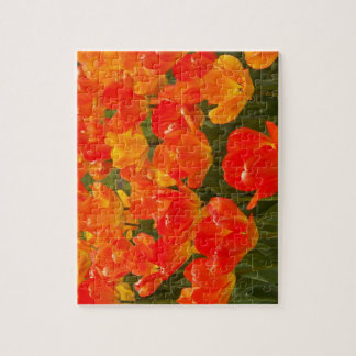 Red Field of Flowers Puzzle