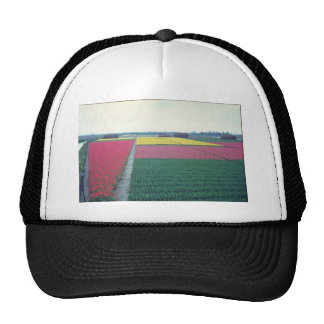 Red Field of tulips flowers Hat