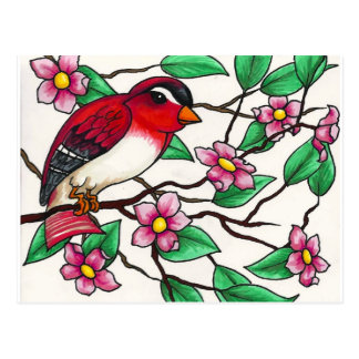 Red Finch on a branch with blossoms Postcard