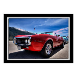 Red Firebird by Lillian Photography Poster