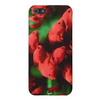 Red Fish Cover For iPhone 5