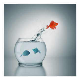 red fish jumping poster