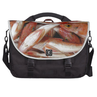 Red Fish with Yellow Eyes Bags For Laptop