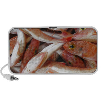 Red Fish with Yellow Eyes Mini Speaker