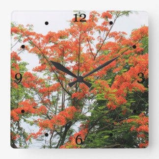 Red flamboyant flowering tree square wall clock