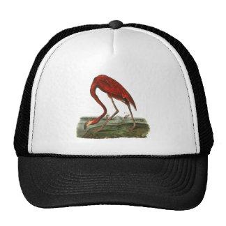 Red Flamingo Illustration Trucker Hat