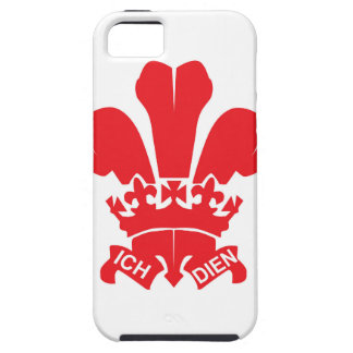 Red Fleur de Lis iPhone SE/5/5s Case