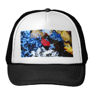 Red floating fall leaf with reflection of blue sky trucker hat