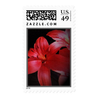 Red Floral Postage