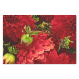 Red Floral Tissue Paper