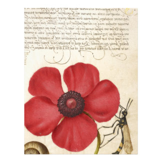 Red Flower And Snail Letterhead