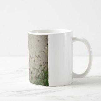 Red flower bird classic white coffee mug