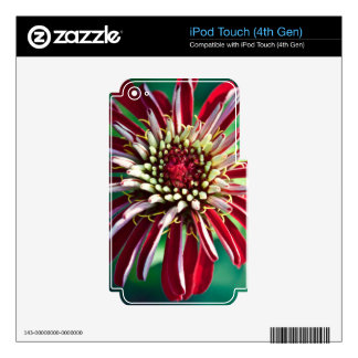 Red Flower (Close-up) Decals For iPod Touch 4G