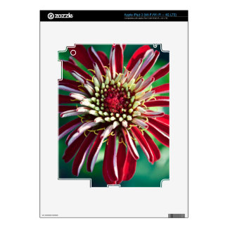 Red Flower (Close-up) Skins For iPad 3