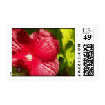 red flower customizable stamp