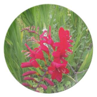 Red Flower Dinner Plate