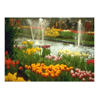 Red Flower exposition, Spring Bulbs Show flowers Personalized Invites