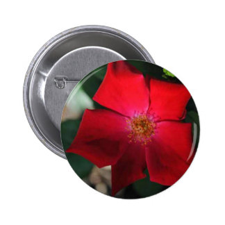 Red Flower / flor rojo 2 Inch Round Button