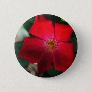 Red Flower / flor rojo Button