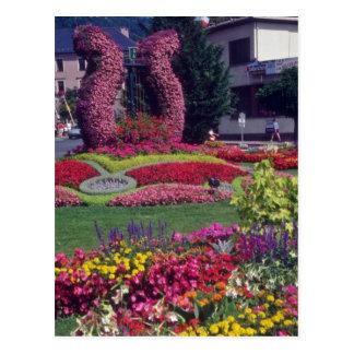 Red Flower Harp In Central Park, Haute Savoie flow Postcard