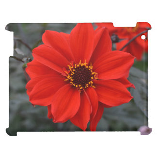 Red flower iPad covers