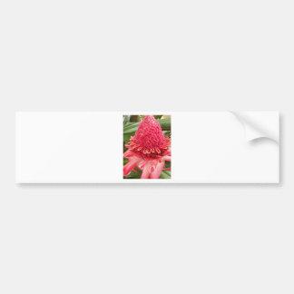 Red Flower.jpg Bumper Sticker