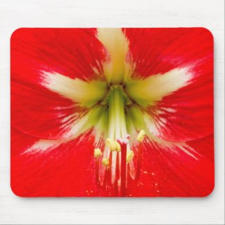 Red Flower Mouse Pads