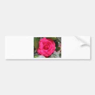 Red flower of Camellia japonica Rachele Odero Bumper Sticker
